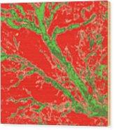 Arboreal Plateau 37 Wood Print