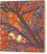 Arboreal Plateau 44 Wood Print
