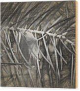 Arborescence Wood Print