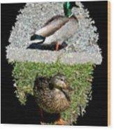 Arboretum Quackers Wood Print