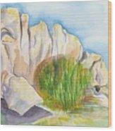 Arboretum Rocks Wood Print