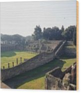 Arcaded Court Of The Gladiators Pompeii Wood Print