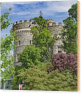 Arcadia University Castle - Glenside Pennsylvania Wood Print