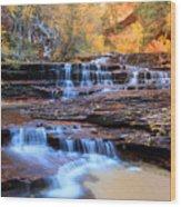 Arch Angel Waterfalls In Zion Wood Print