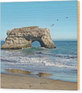 Arch In The Sea With Pelicans Flying By, At Natural Bridges State Beach, Santa Cruz, California Wood Print