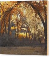 Arch Of Trees Wood Print