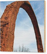 Arch Over Trees Wood Print