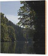 Arch Wood Print