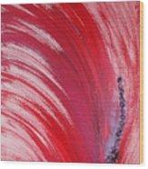 Archangel Raziel  Wood Print
