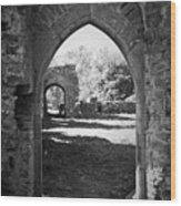 Arched Door At Ballybeg Priory In Buttevant Ireland Wood Print