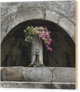 Arched Fountain Wood Print