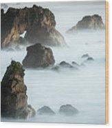 Arched Rock Sea Bird Wood Print