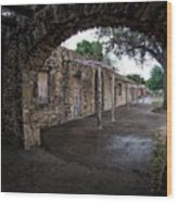 Arched View Wood Print
