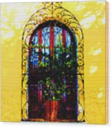 Arched Window By Darian Day Wood Print