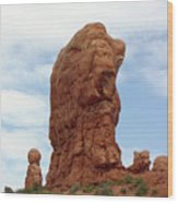 Arches Formation 27 Wood Print