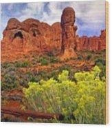 Arches Landsape 2 Wood Print