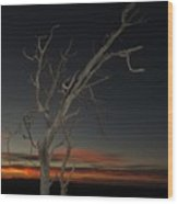 Arches Lone Tree At Dusk Wood Print