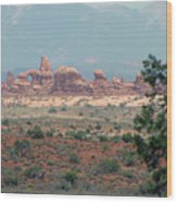 Arches National Park 20 Wood Print