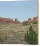 Arches National Park 21 Wood Print