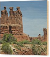 Arches National Park 3 Wood Print