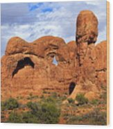 Arches National Park 8 Wood Print