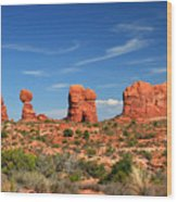 Arches National Park - Hoodoos Carved In Entrada Sandstone Wood Print