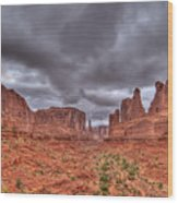Arches National Park One Wood Print