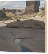Arches National Park Park Avenue  Wood Print