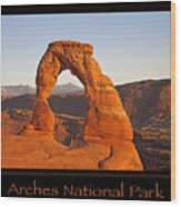Arches National Park Poster Wood Print