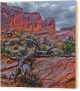Arches National Park Rain Wood Print