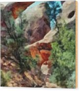 Arches National Park Trail Wood Print