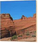 Arches National Park, Utah Usa - Delicate Arch Wood Print
