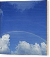 Arching Rainbow Wood Print