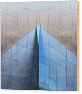 Architectural Reflections 4619L Wood Print