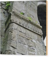 Architecural Detail At Irish Jerpoint Abbey County Kilkenny Ireland Wood Print