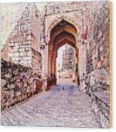 Archways Ornate Palace Mehrangarh Fort India Rajasthan 1a Wood Print