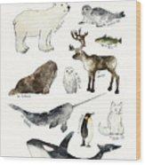 Arctic And Antarctic Animals Wood Print