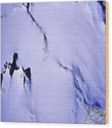 Arctic Fastness  Wood Print