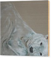 Arctic Frolic Wood Print