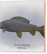 Arctic Grayling Wood Print