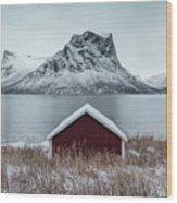 Arctic Landscape In Northern Norway, Senja Wood Print