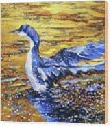 Arctic Loon On Golden Pond Wood Print