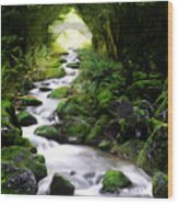 Arden Bridge Wood Print