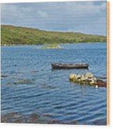 Ardmore Bay Wood Print