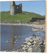 Ardvreck Castle Scotland Wood Print