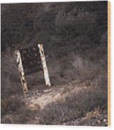 Area Closed, Nudity Prohibited Wood Print