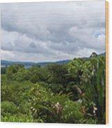 Arenal Lake And Volcano Wood Print