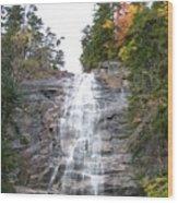 Arethusa Falls 1 Wood Print