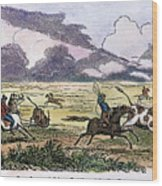 Argentina: Gauchos, 1853. Gauchos Catching Cattle On The Argentine Pampas. Wood Engraving, American, 1853 Wood Print