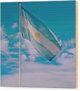 Argentinian Flag In Central Park In Bariloche-argentina  Wood Print